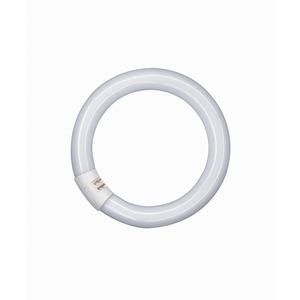 Tube Lumilux Circular 32W T9 840 G10Q